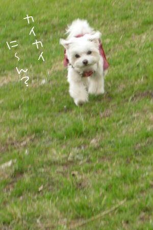 3_28_3800.jpg