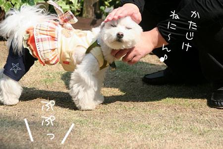 4_22-38.jpg