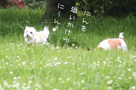 5_11_3913.jpg