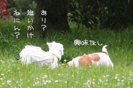 5_11_3915.jpg