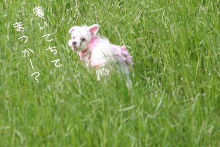 5_18_5211.jpg