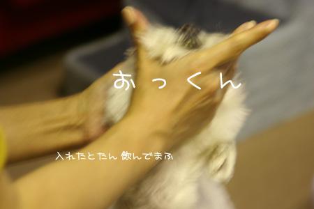 5_23_5702.jpg
