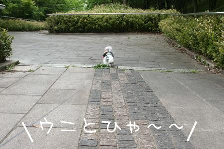 5_24_5774.jpg