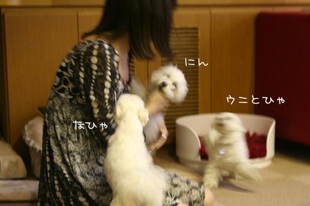 5_8_3654.jpg