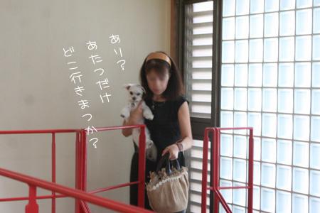 6_20_9356.jpg