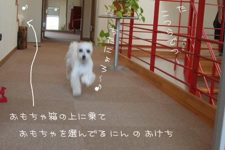 6_24_9590.jpg