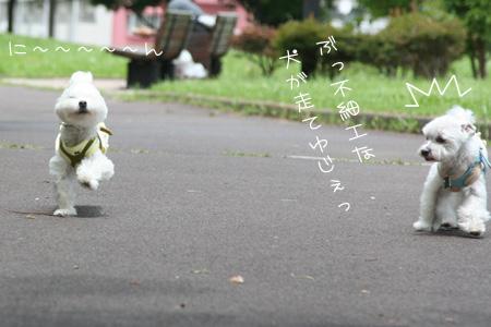 6_24_9789.jpg