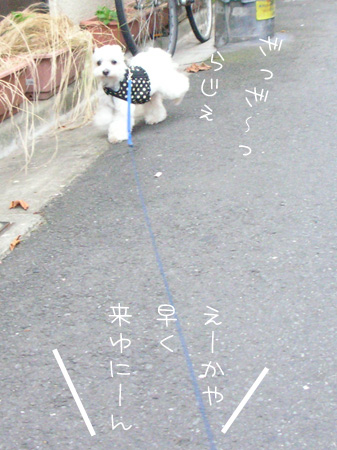 7_11_4215.jpg