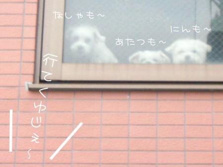7_14_4243.jpg