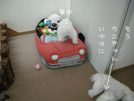 7_18_4053.jpg