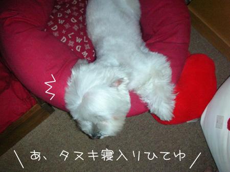 7_21_4379.jpg