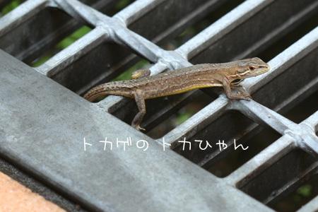 7_22_2566.jpg