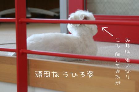 7_23_2602.jpg