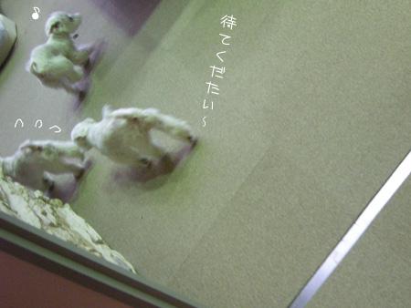 7_27_4653.jpg