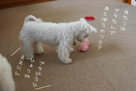 7_30_3244.jpg