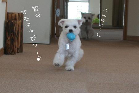 7_30_3260.jpg