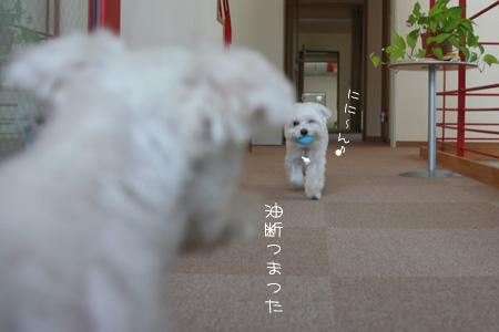 7_30_3303.jpg
