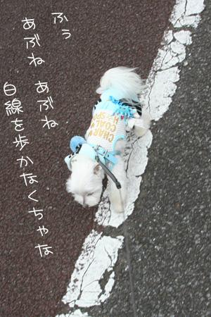 7_3_0587.jpg