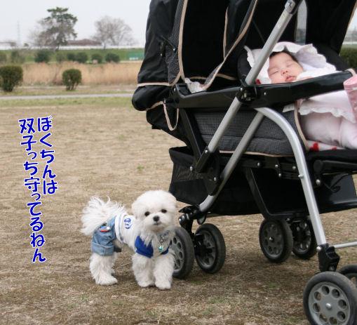 20080326_9.jpg