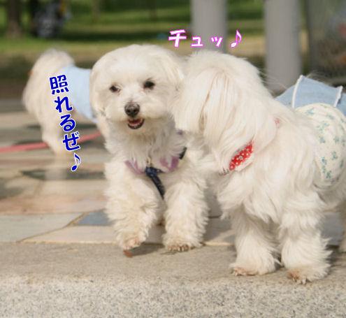 20080507_052.jpg