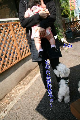 20080514_014.jpg
