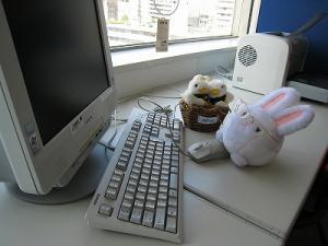 殿さまウサギ、お仕事です