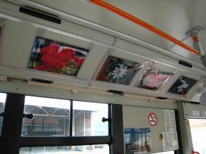 花バス、木原さんの作品1