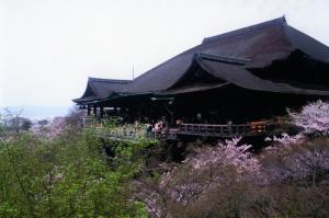 撮彩作品「春2008」、清水寺1