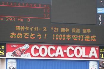 04121.jpg