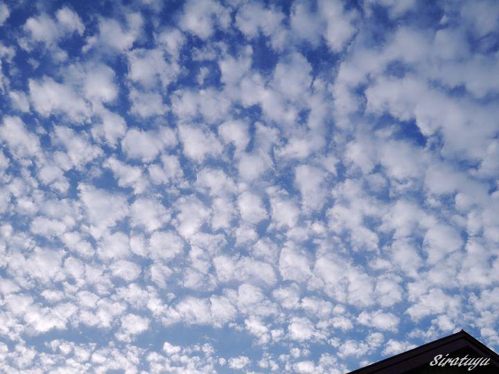 うろこ雲3