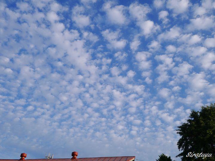 うろこ雲4