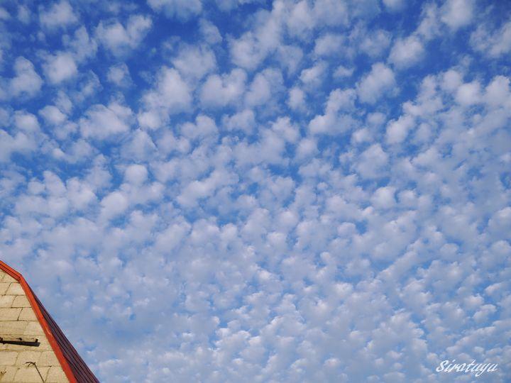 うろこ雲5