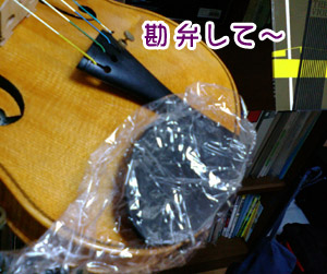 ラッパーバイオリン