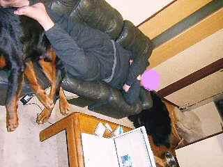 2008年03月30日_GRP_0001~1