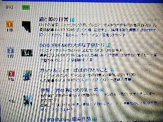 2008年04月11日_GRP_0000