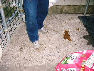 2008年04月12日_GRP_0030