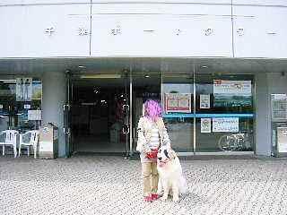 2008年04月12日_GRP_0021