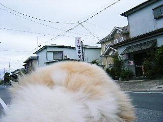 2008年04月19日_GRP_0000