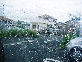 2008年05月02日_GRP_0003