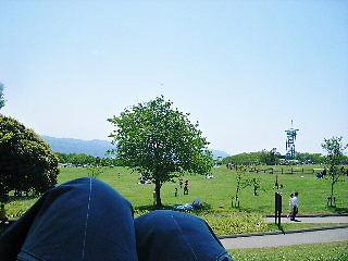 2008年05月06日_GRP_0015