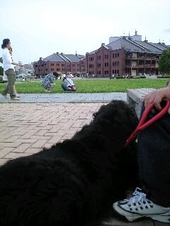2008年06月15日_PA0_0001