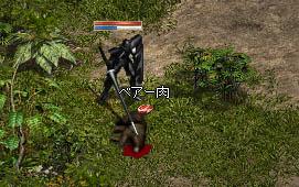 LinC3461_20080625s.jpg