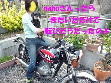 P1040966-2.jpg