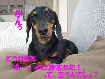 P1080388-2.jpg