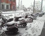 vecchionido.snow2.jpg