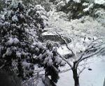 vecchionido.snow4.jpg