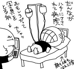 80723hachi.jpg