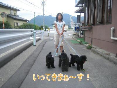 20080801b.jpg