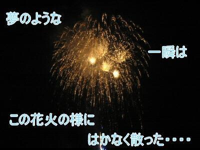 20080803f.jpg