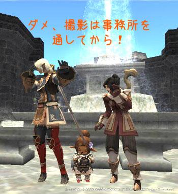 trio_6.jpg
